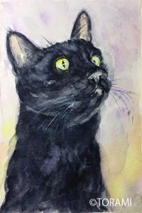 黒猫PortraitⅡ