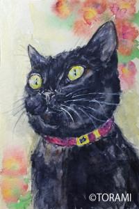 黒猫PortraitⅢ